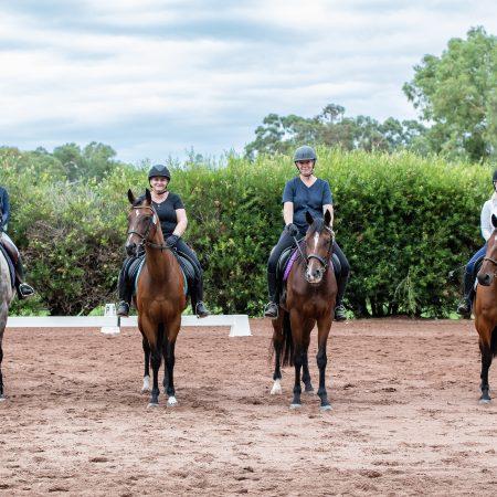 RWWA Launches WA Horse Passport thumbnail