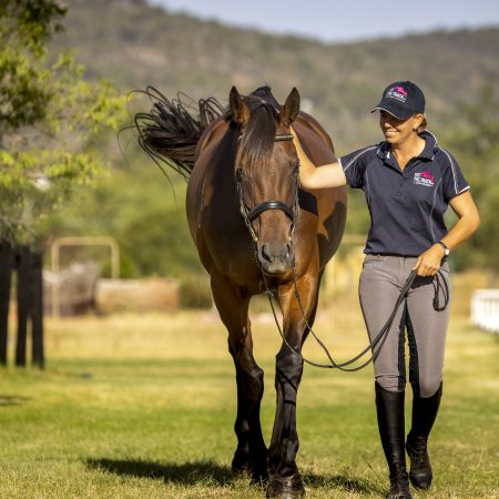 RWWA Increases its Commitment to Racehorse Welfare thumbnail