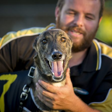 University of Technology Sydney Review of WA Greyhound Tracks thumbnail